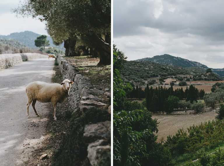 Boda rural en Mallorca
